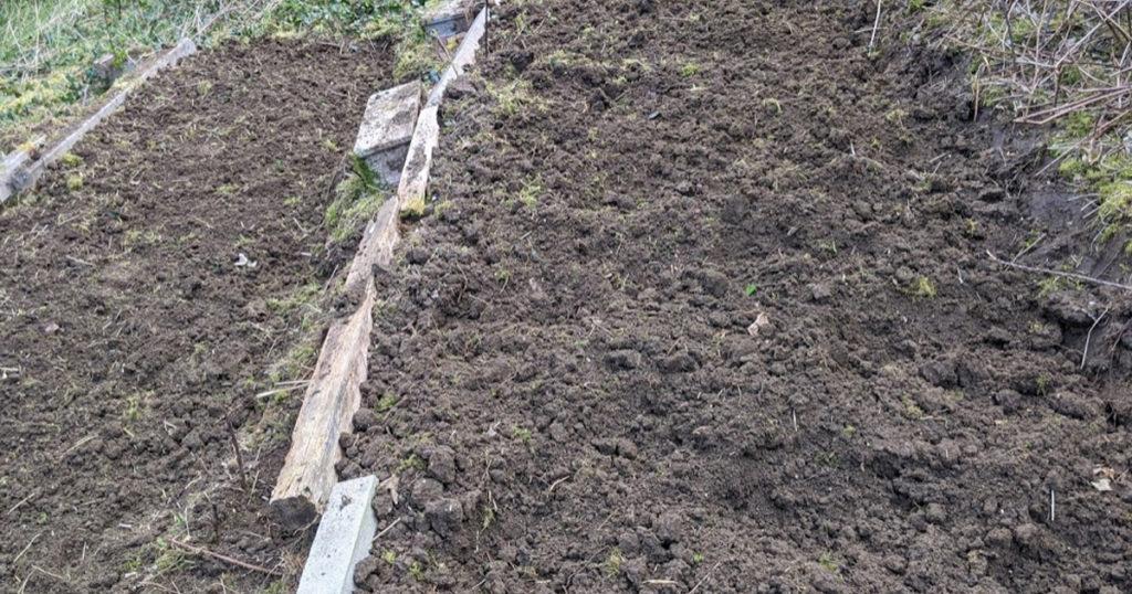 terre pour les oignons