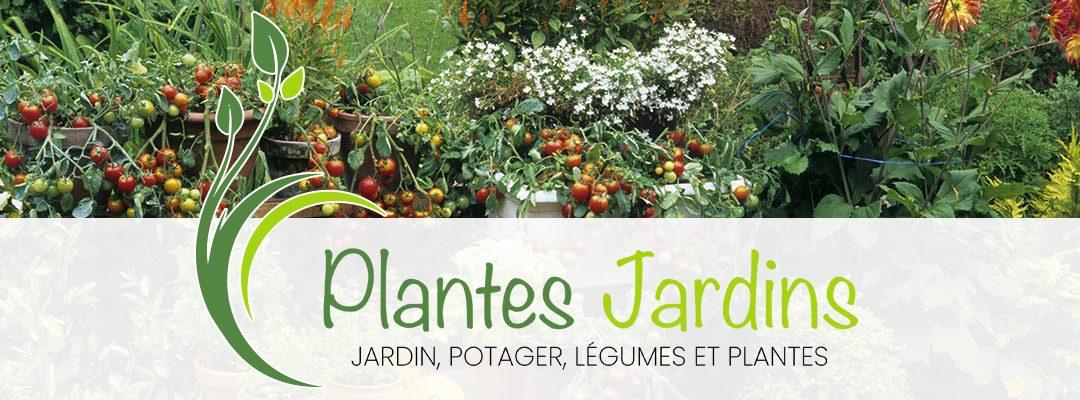 Plantes et jardins : conseils en jardinage et au potager
