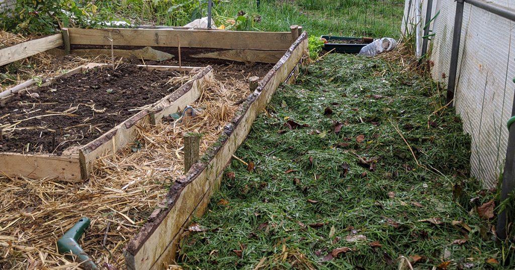 mélanges de crottin, herbes, feuilles